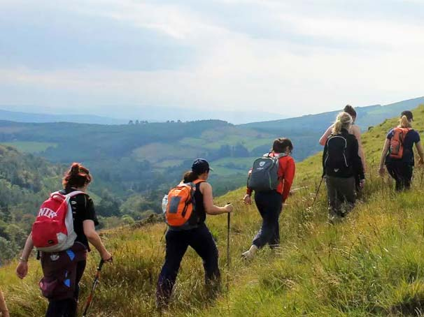 Walking group on the Galtees